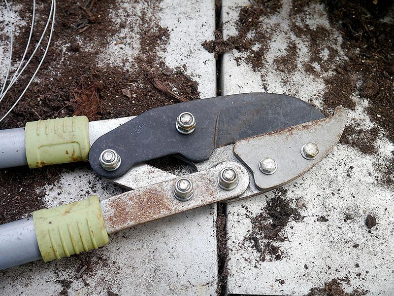 servizio-di-affilatura-coltelli-e-attrezzi-agricoli-arrotino-coltelleria-modena